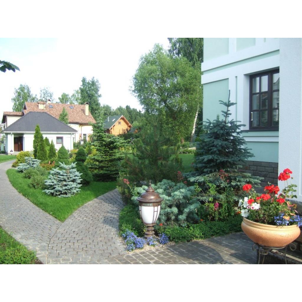 Реставрация сада. Цена: от 60000 -100000 рублей за 1 кв. м